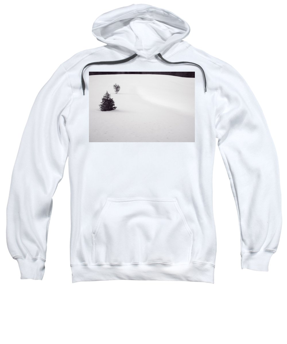 Snow Sweatshirt featuring the photograph Landscape With 2 Trees by David Stone