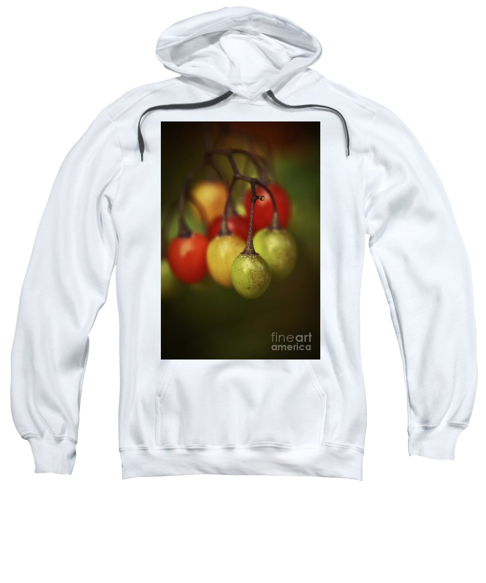 Fruit Prints Sweatshirt featuring the photograph Life Savour by Aimelle