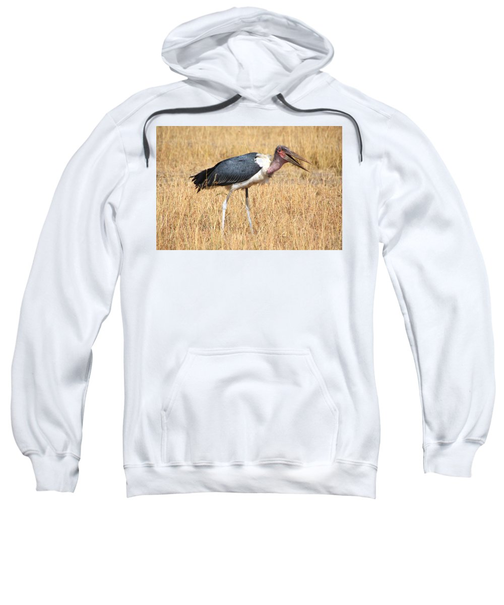 Birds Sweatshirt featuring the photograph Marabou Stork Kenya by Carole-Anne Fooks