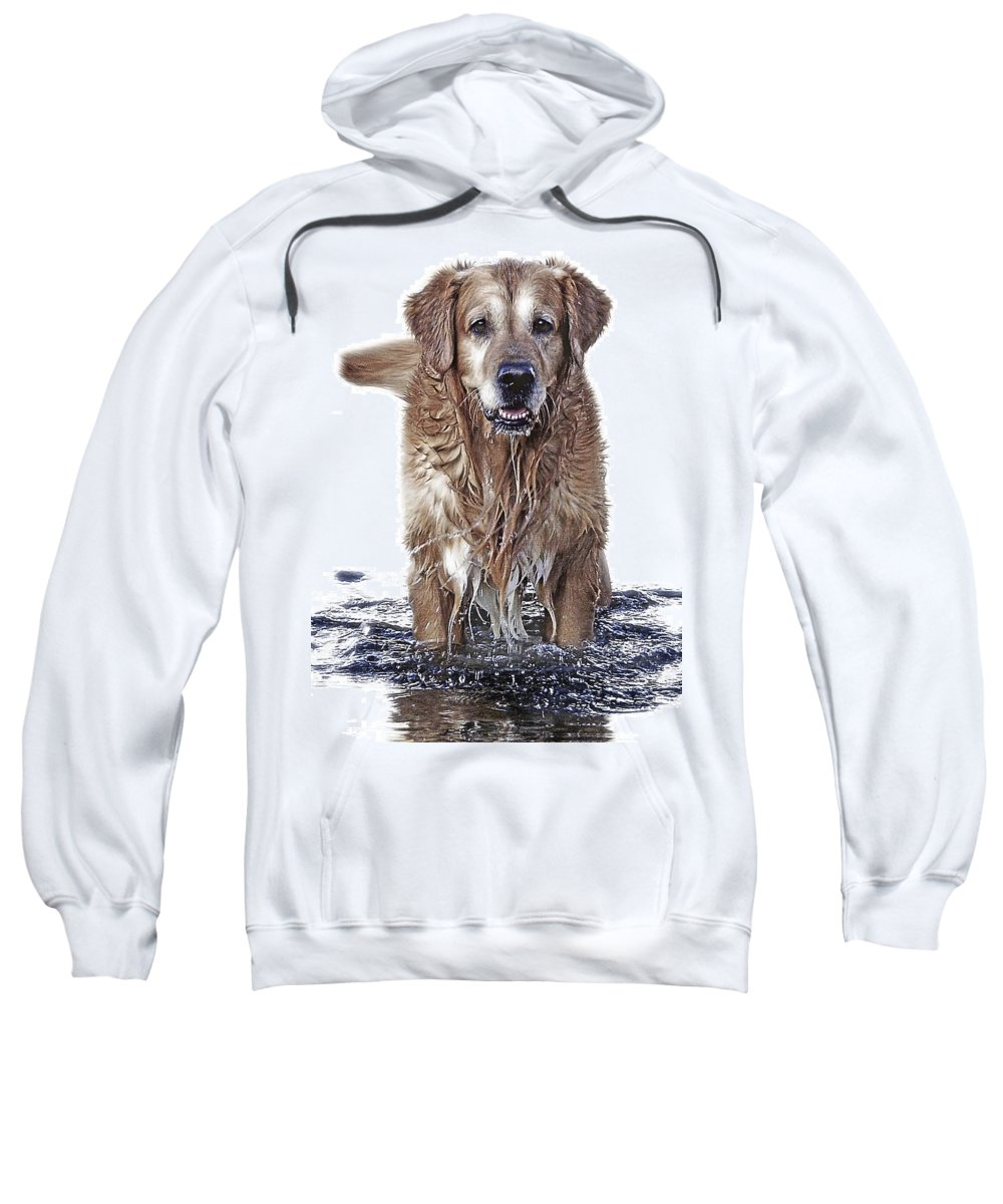 Dog Sweatshirt featuring the photograph Master Of Wet Elements by Joachim G Pinkawa