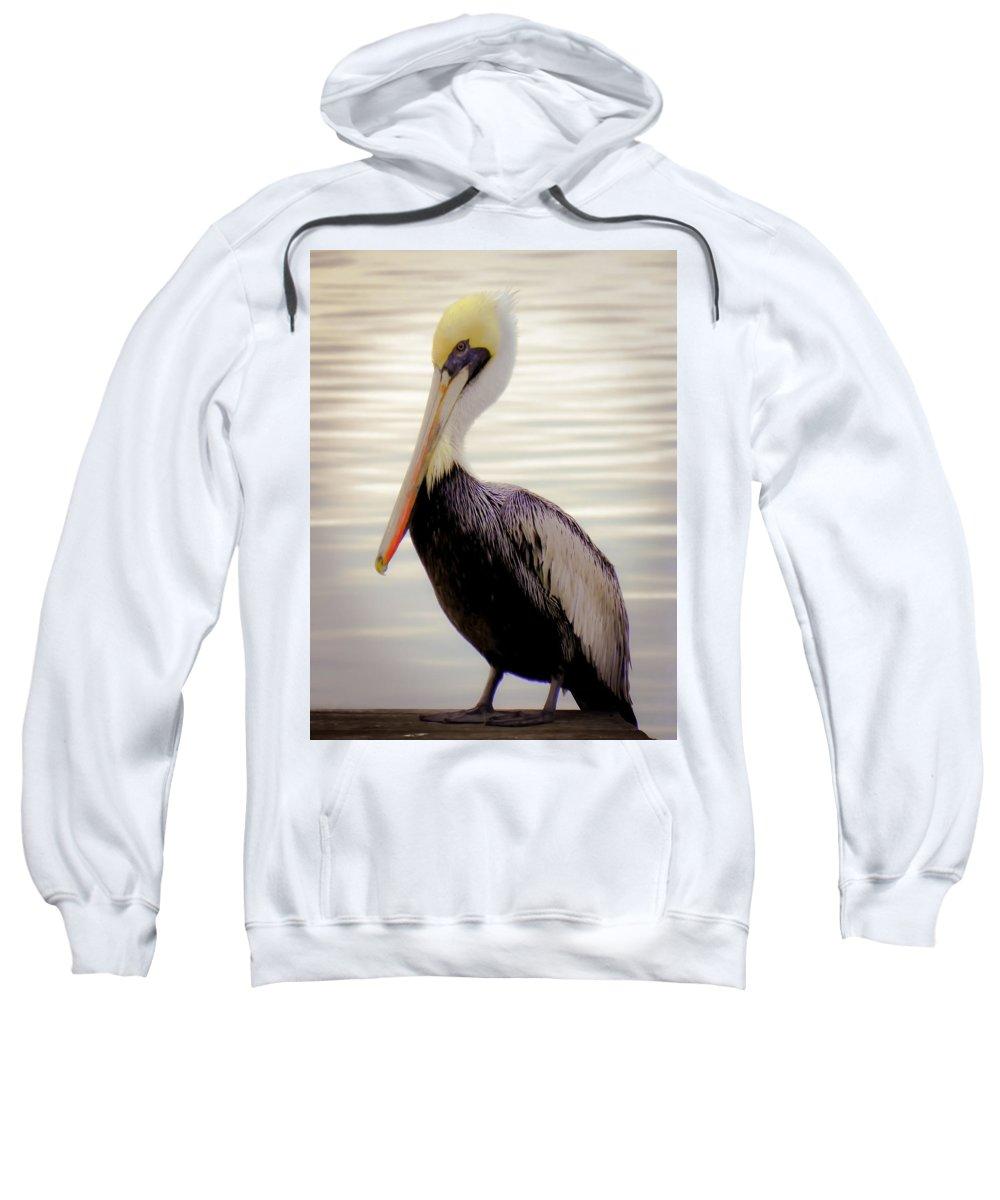 Bird Sweatshirt featuring the photograph My Visitor by Karen Wiles