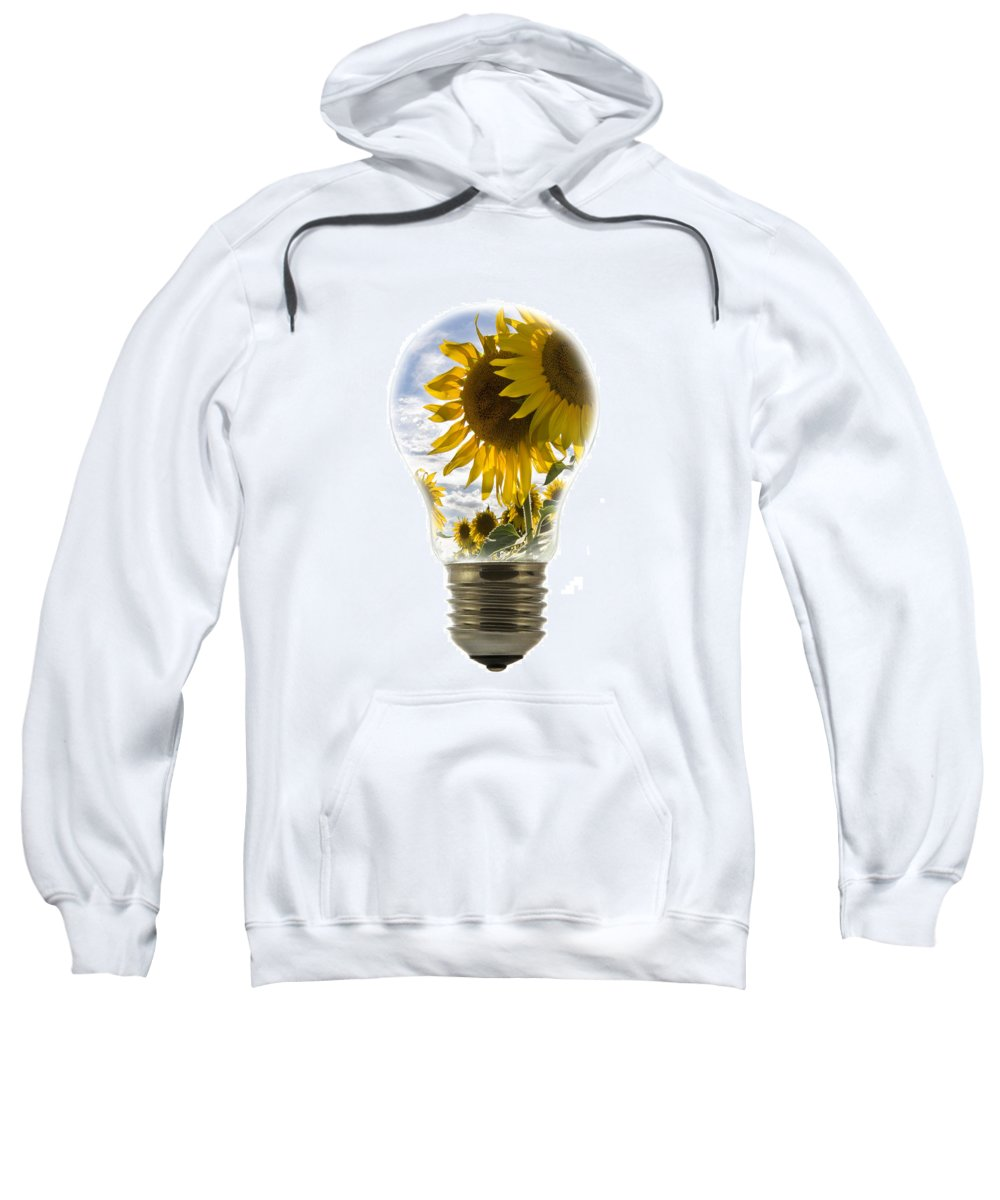 Sunflower Sweatshirt featuring the photograph Nature 2 by Arterra Picture Library