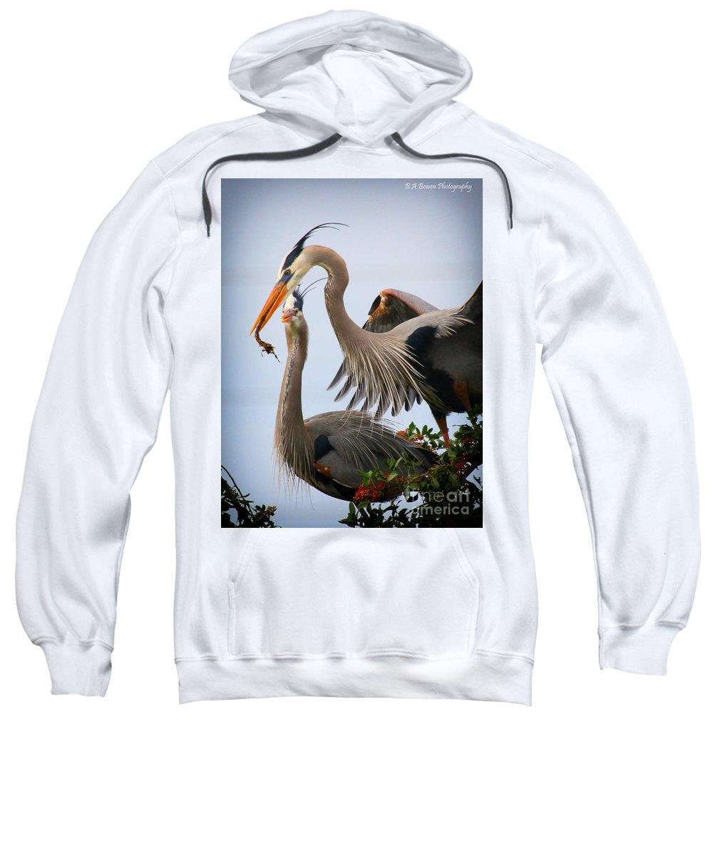Great Blue Heron Sweatshirt featuring the photograph Nestbuilding by Barbara Bowen