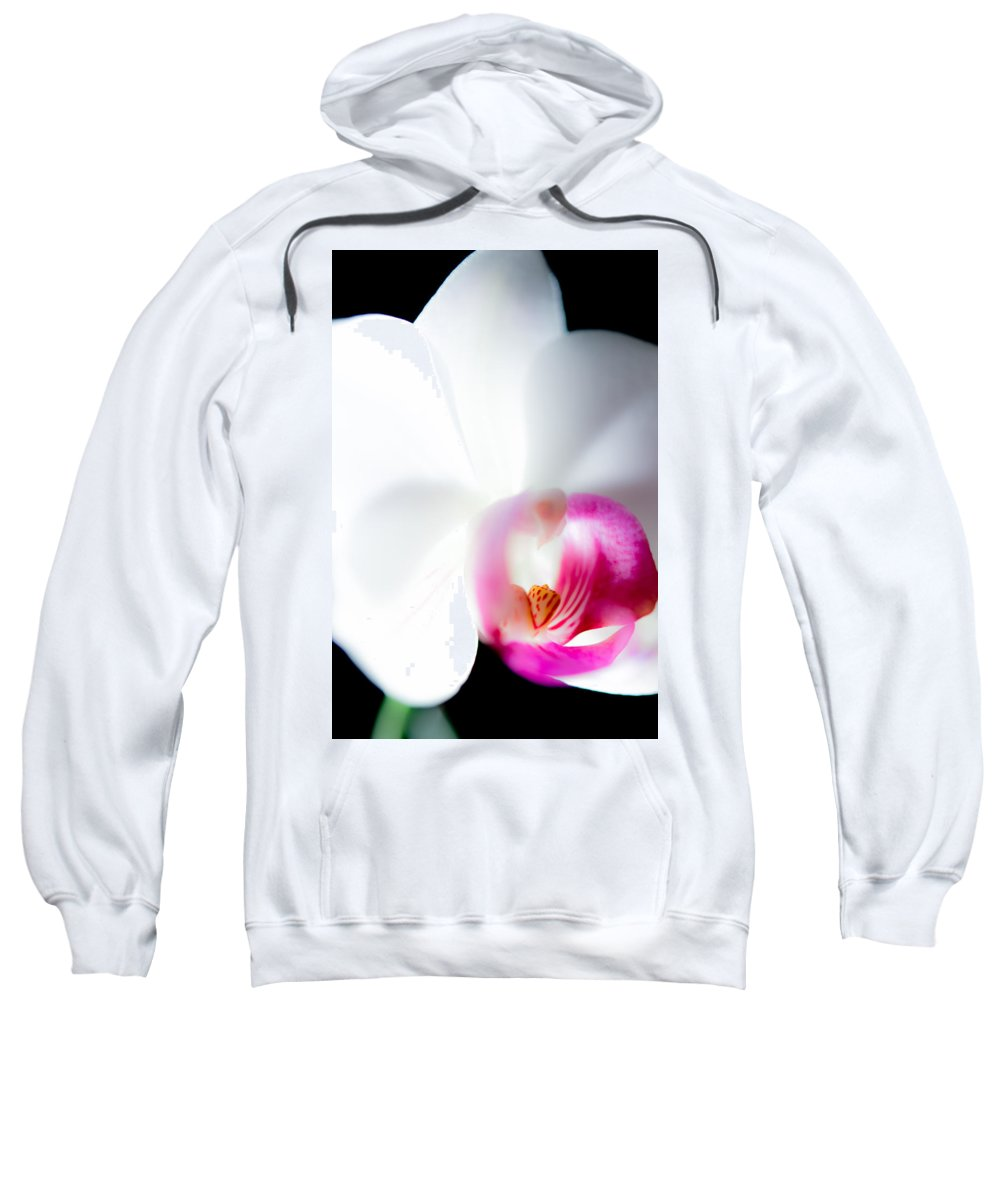 Orchid Sweatshirt featuring the photograph Orchid On Black by Jacquelyn Crady