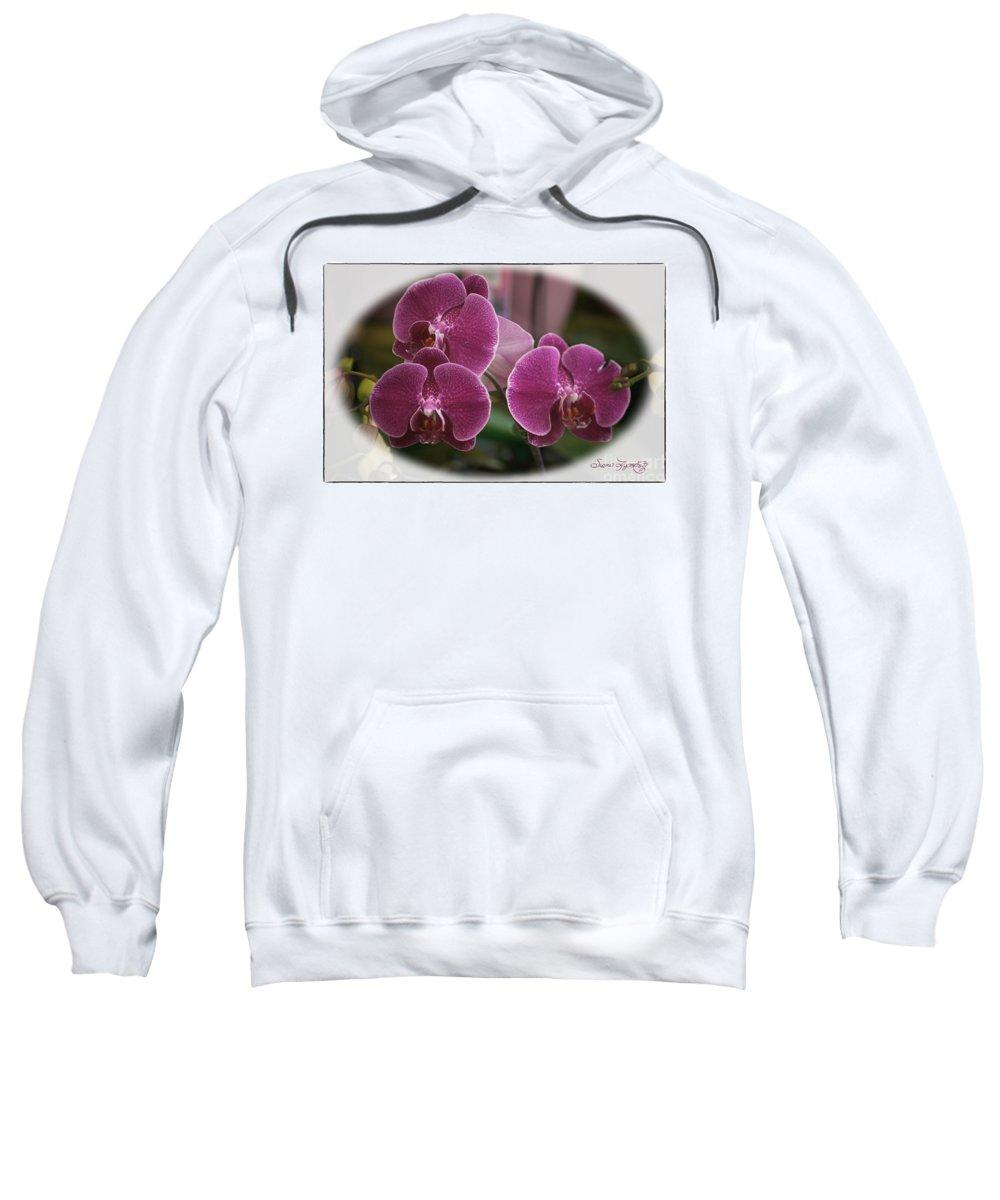 Susan Lipschutz Sweatshirt featuring the photograph Orchid Trio by Susan Lipschutz