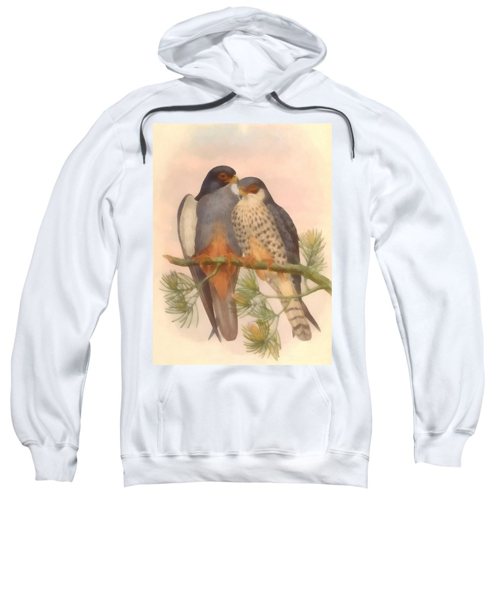 Pair Amur Falcons Sweatshirt featuring the digital art Pair Amur Falcons by Vintage File Collection