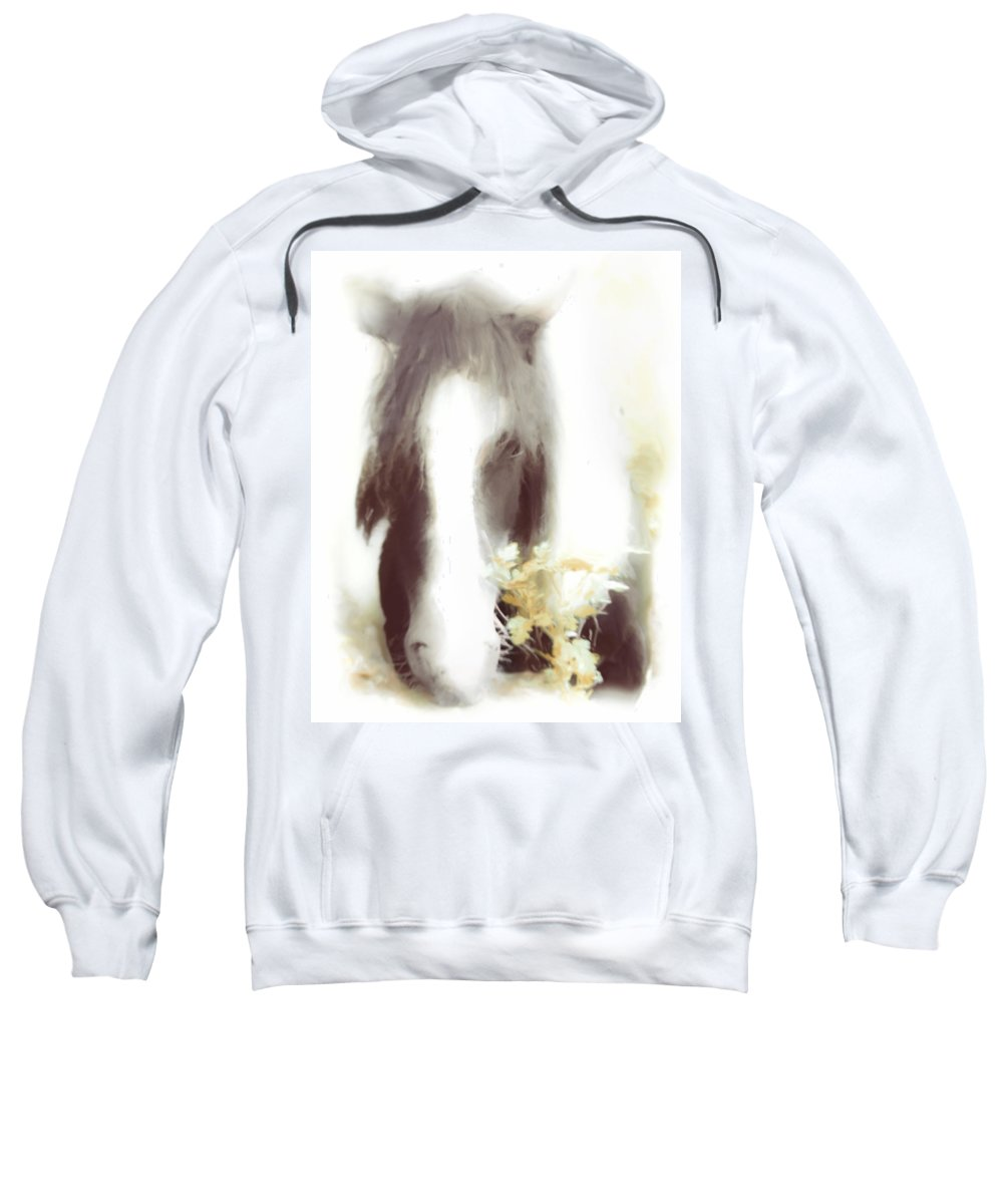 Horse Sweatshirt featuring the photograph Pastel Pony by Hal Halli