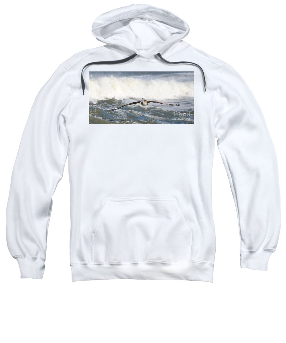 Pelican Sweatshirt featuring the photograph Pelican 4057 by Jack Schultz