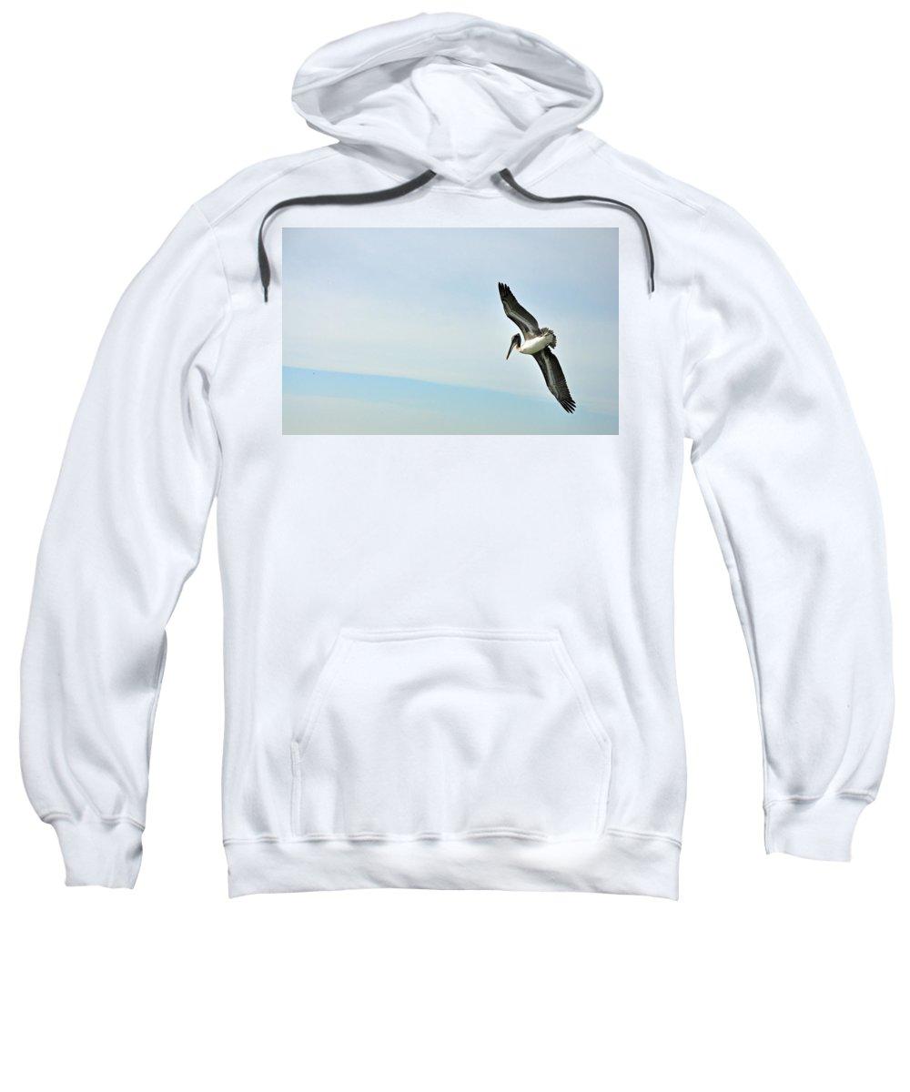 Pelican Sweatshirt featuring the photograph Pelican On Sanibel by Deborah Good