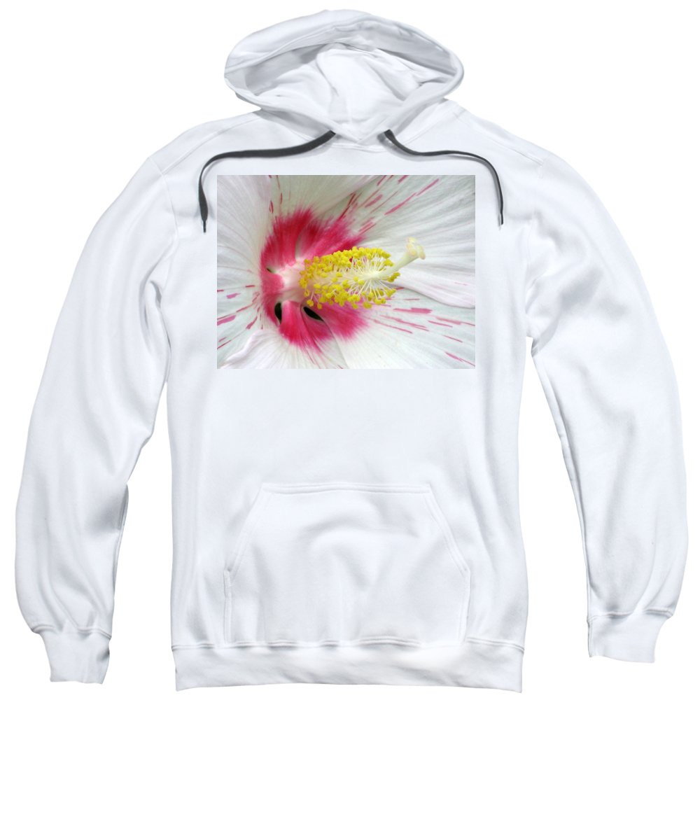 Hibiscus Sweatshirt featuring the photograph Peppermint Flame 01 by Pamela Critchlow