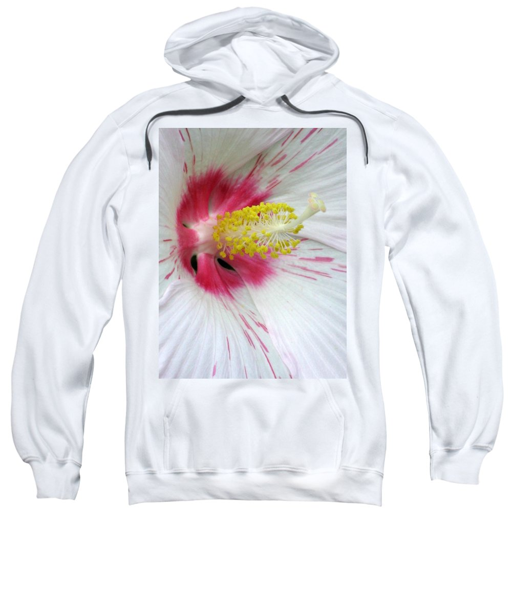 Hibiscus Sweatshirt featuring the photograph Peppermint Flame 02 by Pamela Critchlow
