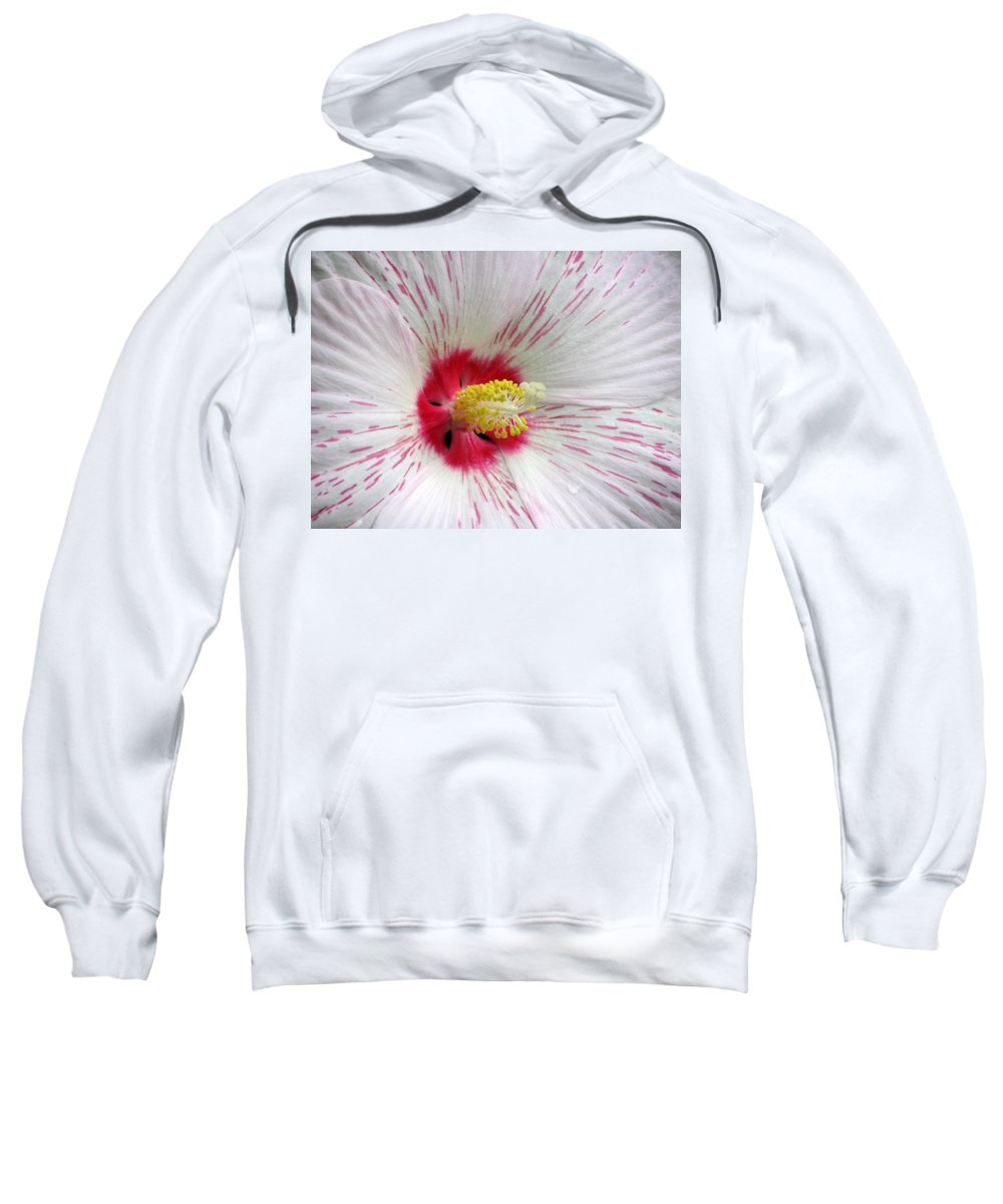 Hibiscus Sweatshirt featuring the photograph Peppermint Flame 04 by Pamela Critchlow