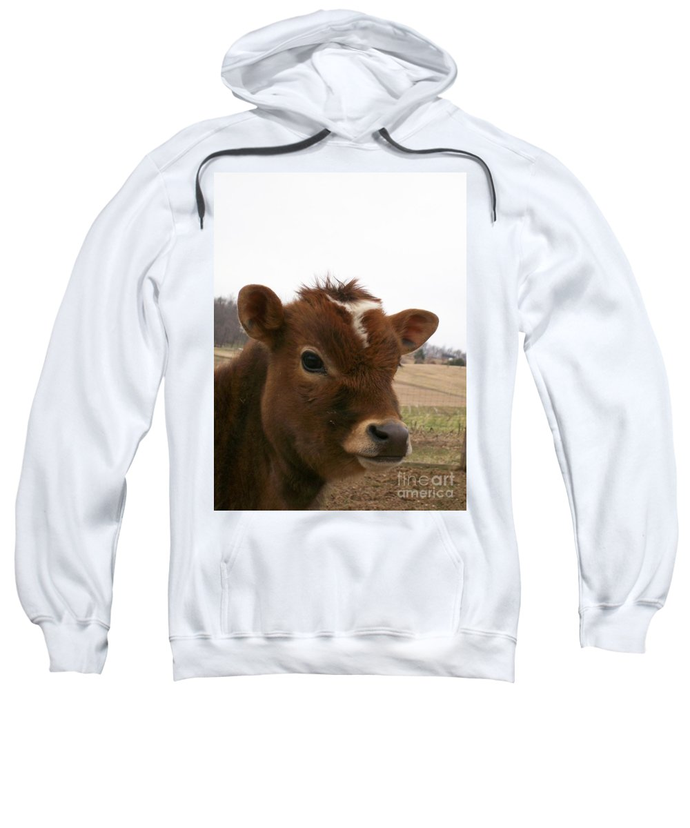 Cow Sweatshirt featuring the photograph Perfect Stance by Sara Raber