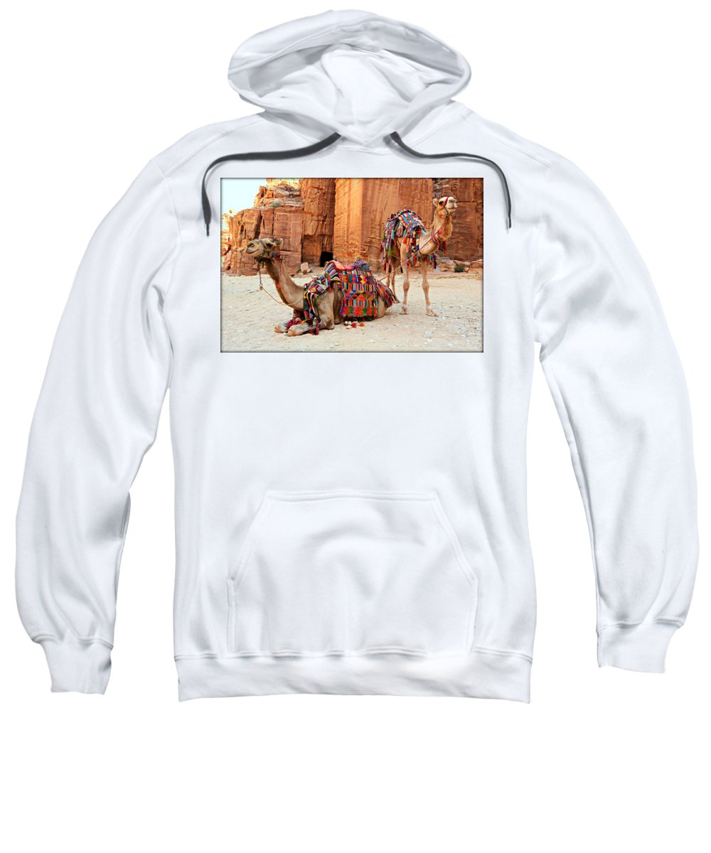 Ancient Sweatshirt featuring the photograph Petra Camels by Stephen Stookey