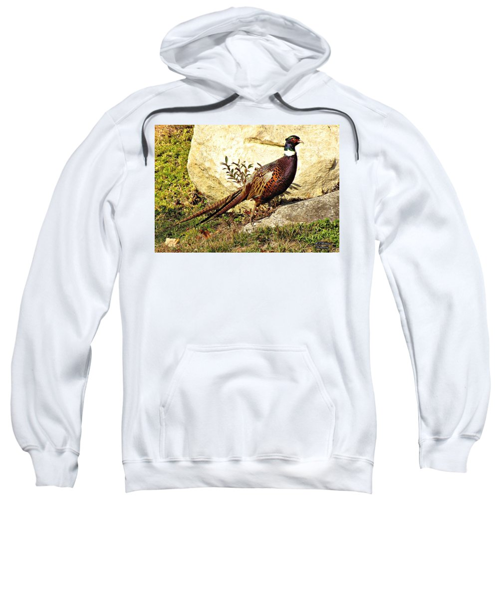 Pheasant Sweatshirt featuring the photograph Pheasant by MTBobbins Photography