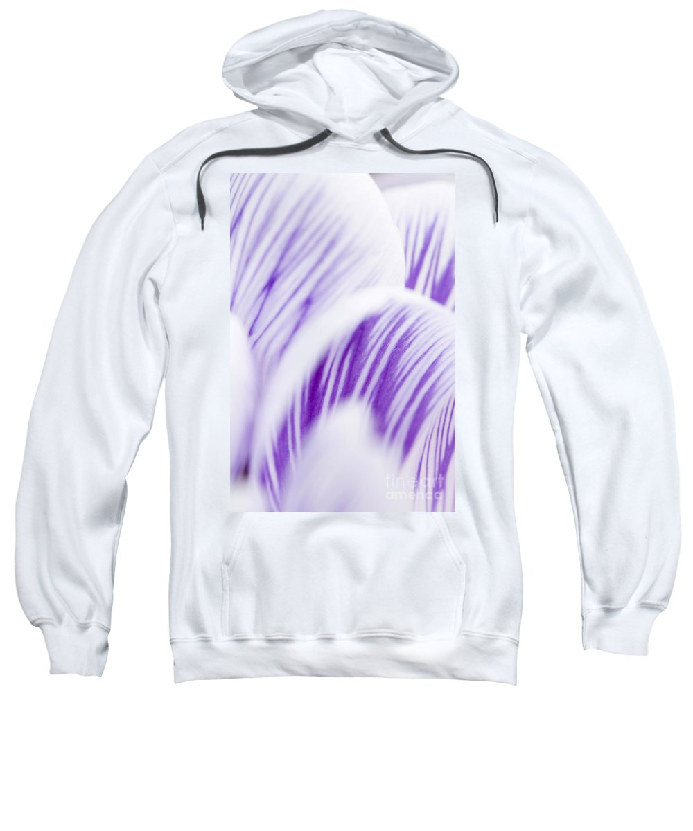 Abstract Sweatshirt featuring the photograph Pickwick by Anne Gilbert