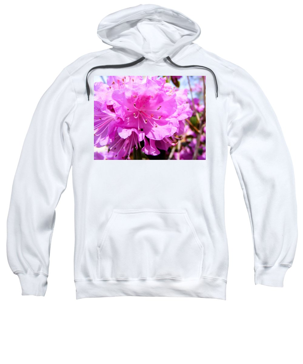 Pink Rhododendrons Sweatshirt featuring the photograph Pink Rhododendrons by Cynthia Woods