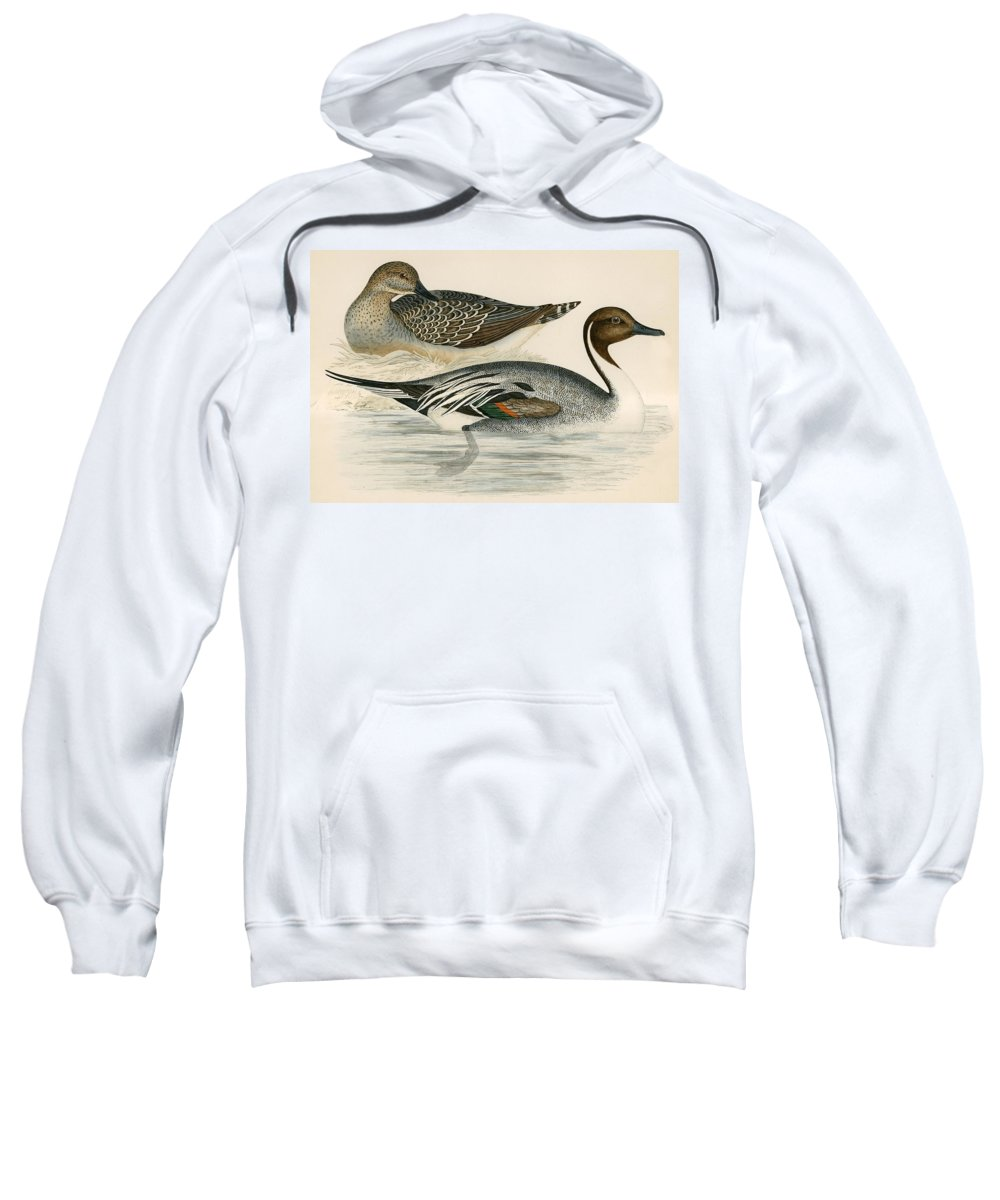Birds Sweatshirt featuring the photograph Pintail Duck by Beverley R. Morris
