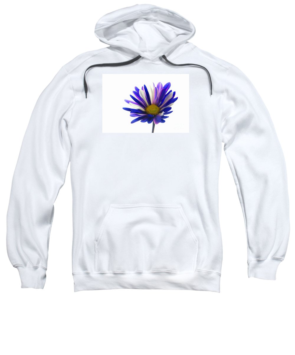 Country Sweatshirt featuring the photograph Pretty Daisy by Robin Lynne Schwind