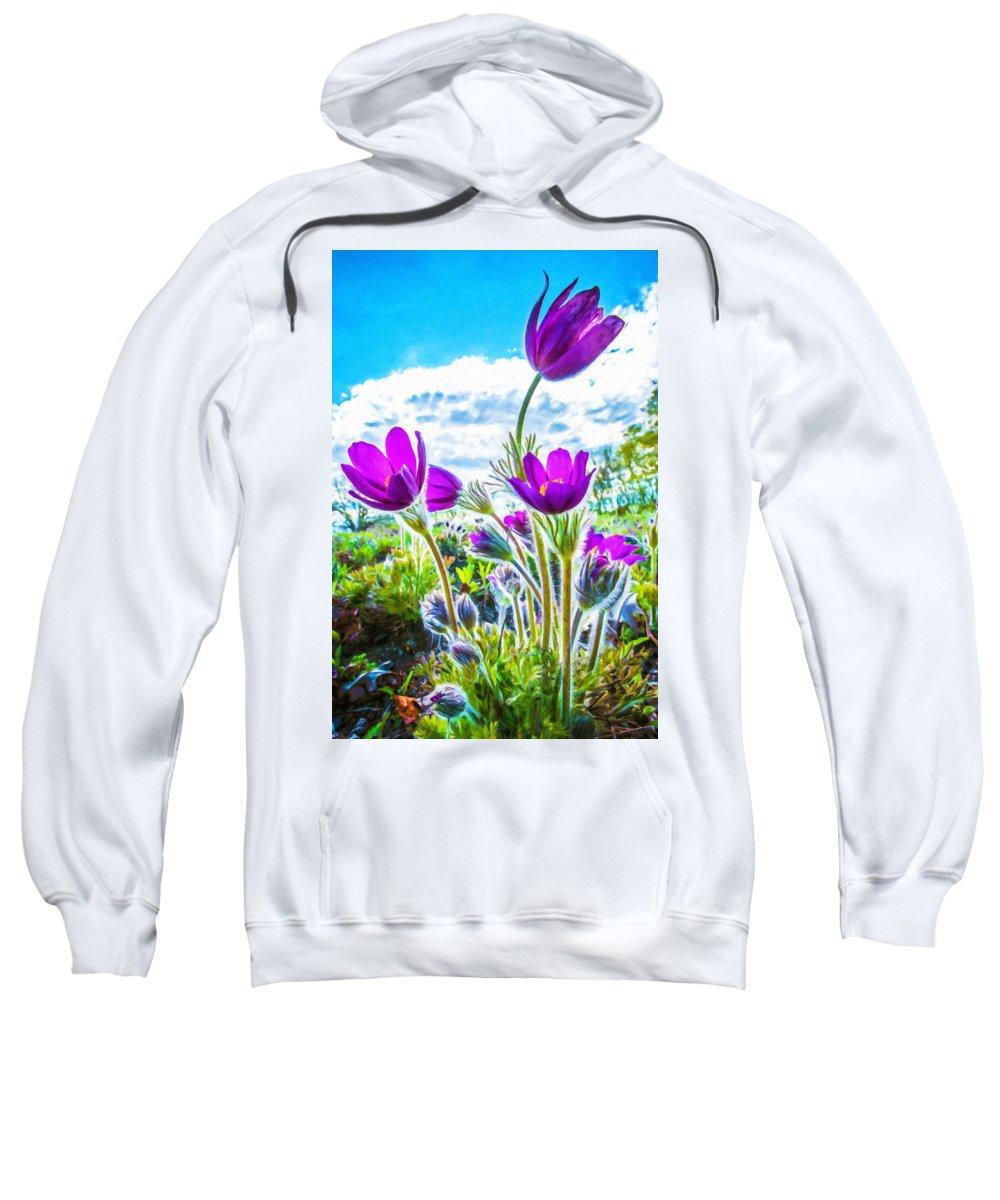 Anemone Sweatshirt featuring the painting Pulsatilla Vulgaris Flowers by Jeelan Clark
