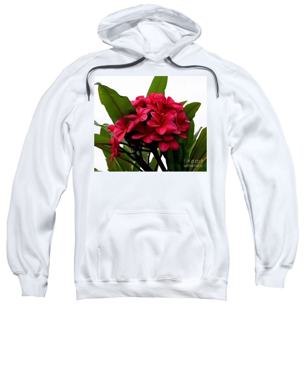 Plumeria Sweatshirt featuring the photograph Red Plumeria by Mary Deal