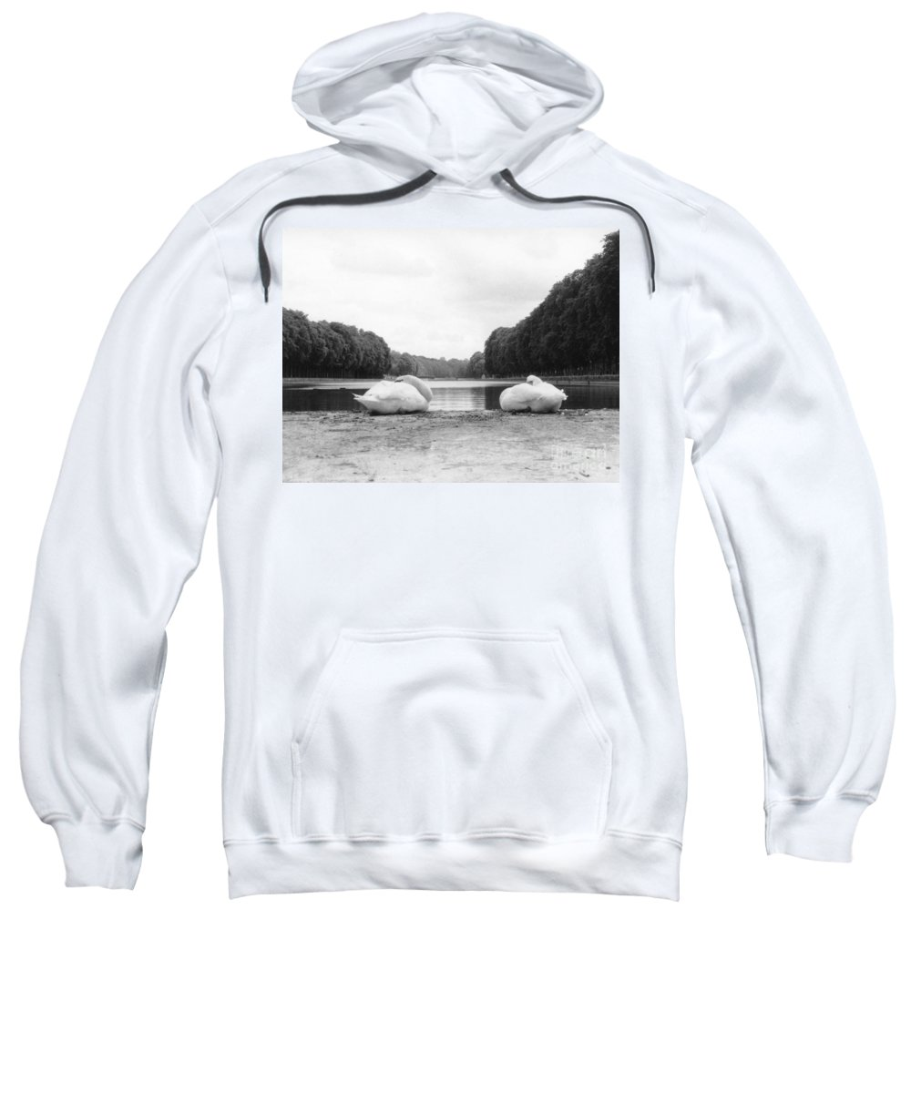 Swans Sweatshirt featuring the photograph Resting Swans by Christine Jepsen