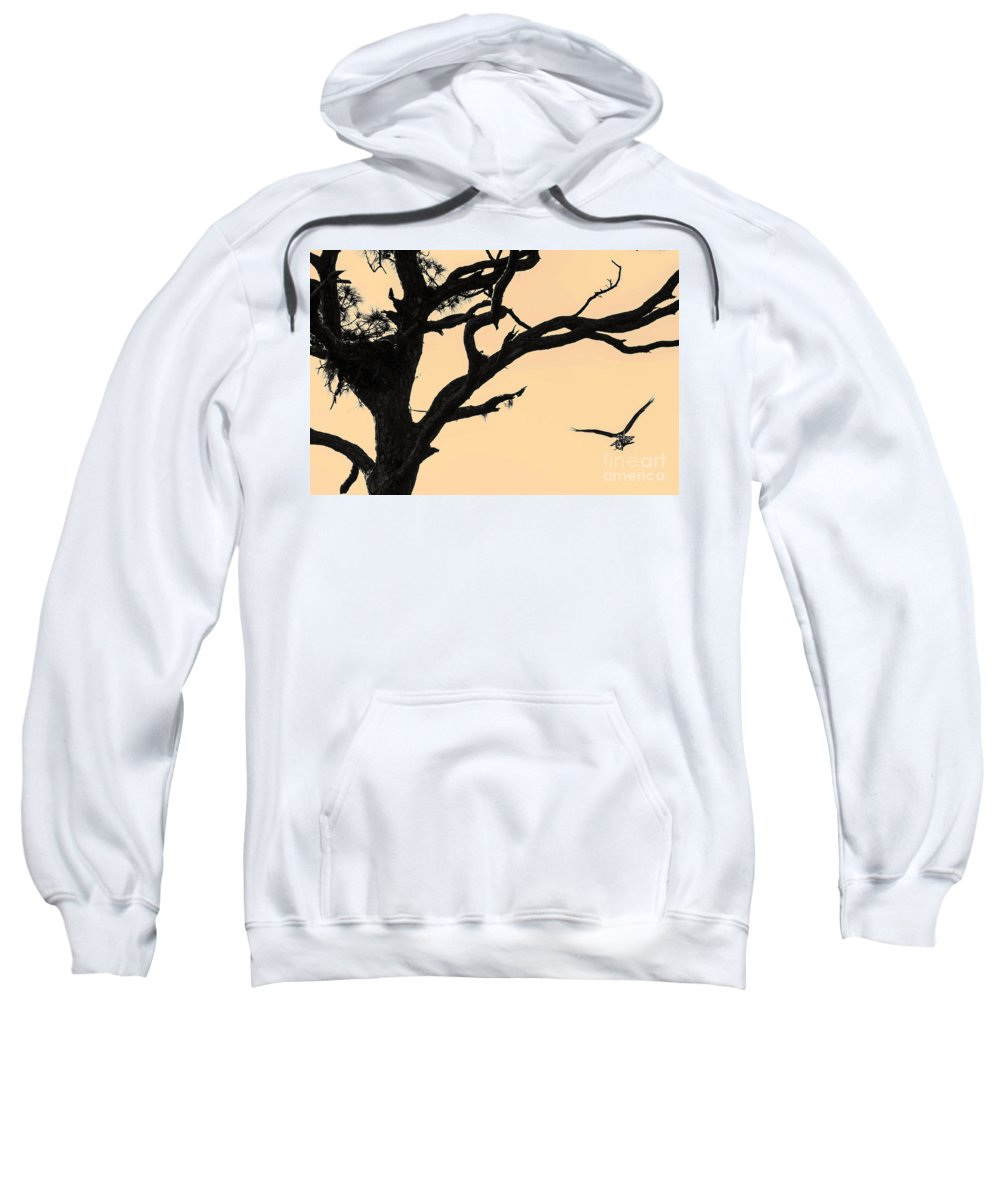 Osprey Sweatshirt featuring the photograph Returning To The Nest by Photos By Cassandra