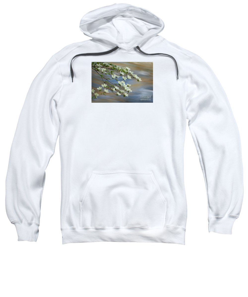 Flowers Sweatshirt featuring the photograph River Dogwood by Alice Cahill