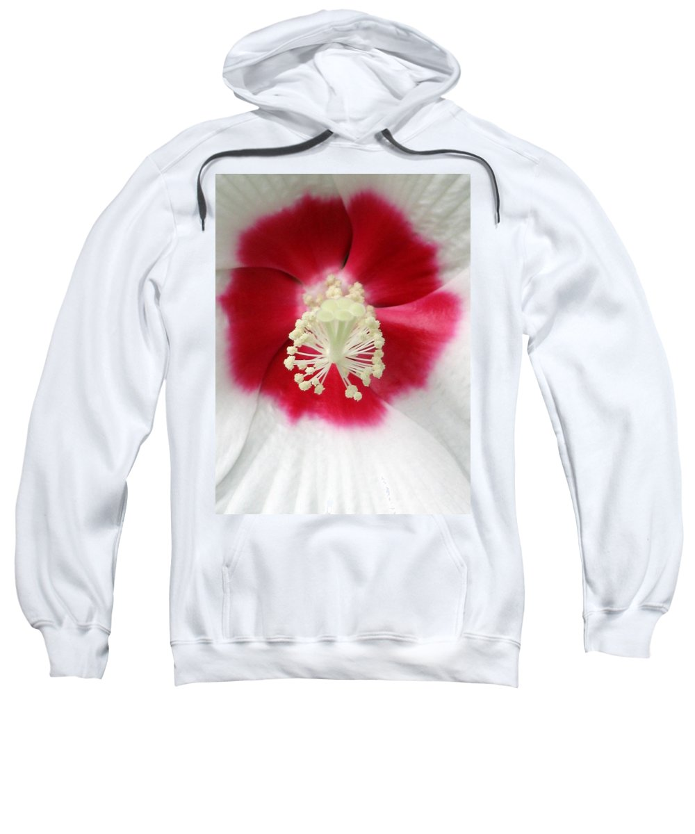 Rose Mallow Sweatshirt featuring the photograph Rose Mallow - Honeymoon White With Eye 03 by Pamela Critchlow