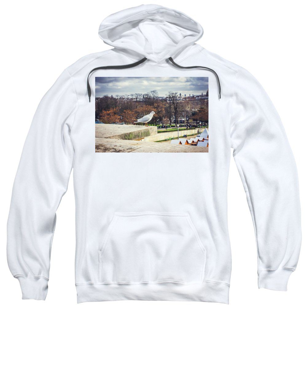 Paris Sweatshirt featuring the photograph Seagull In Paris by Pati Photography