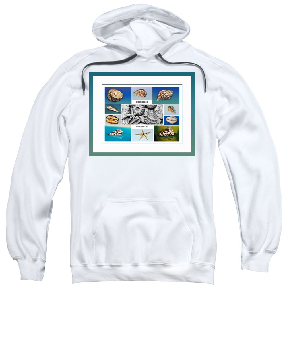 Photography Sweatshirt featuring the photograph Seashell Collection 3 - Collage by Kaye Menner