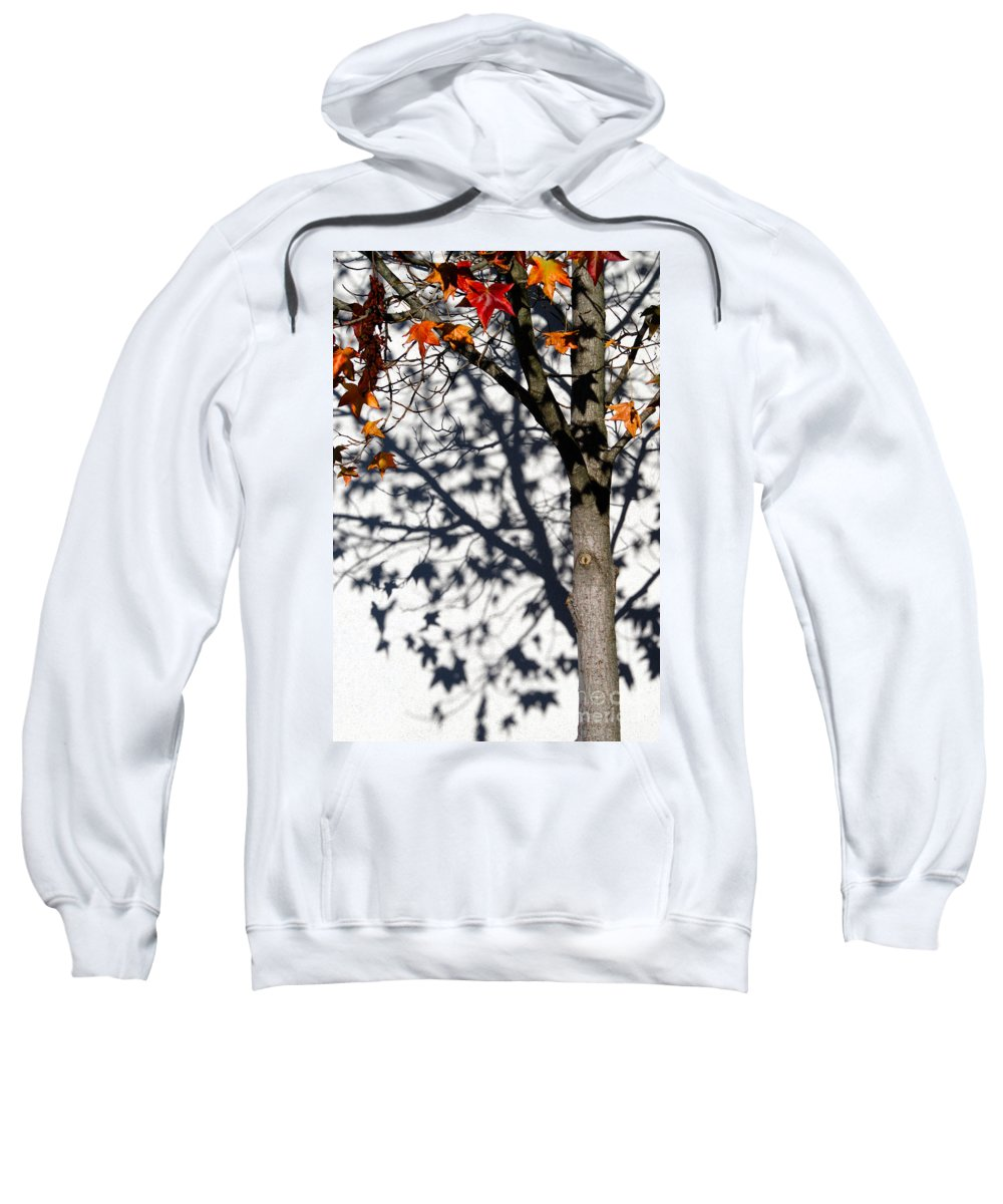 Cml Brown Sweatshirt featuring the photograph Shadows Of Fall by CML Brown