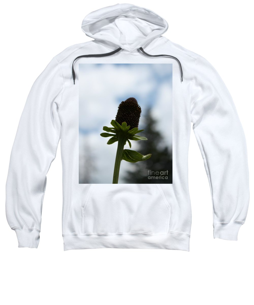 Flower Sweatshirt featuring the photograph Sky Flower by Brandi Maher