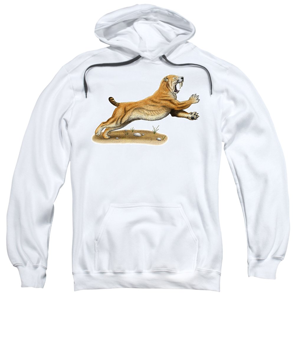 Saber-tooth Tiger Sweatshirt featuring the photograph Smilodon Saber-toothed Tiger by Roger Hall
