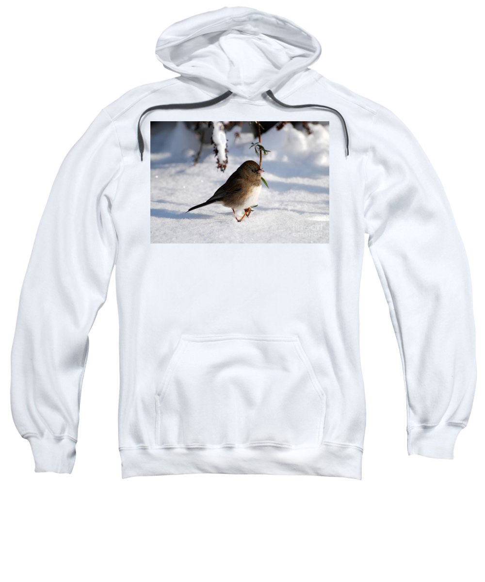 Snow Sweatshirt featuring the photograph Snow Bird by Todd Hostetter