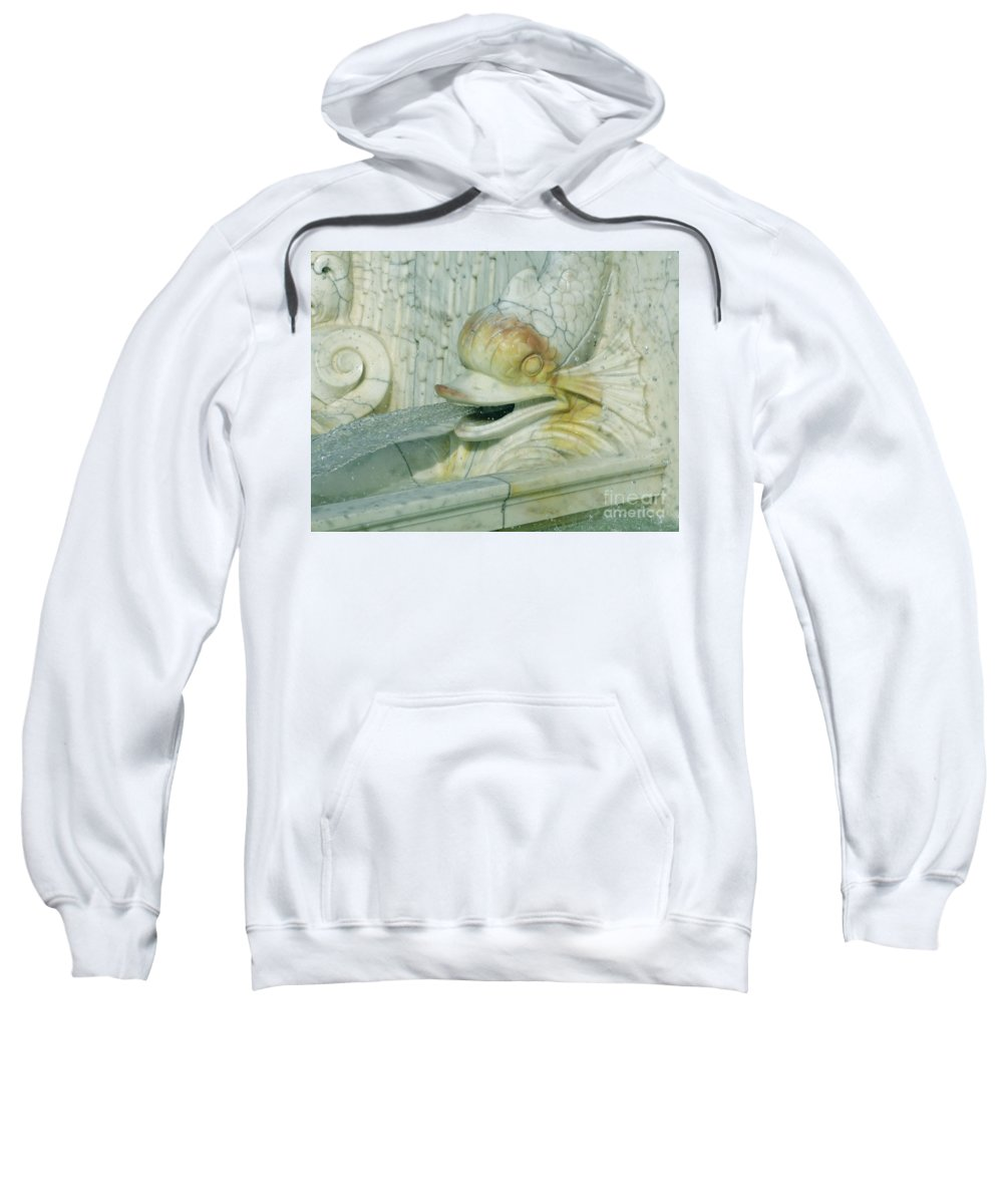 Sculpture Sweatshirt featuring the photograph Somewhat Fishy by Ann Horn