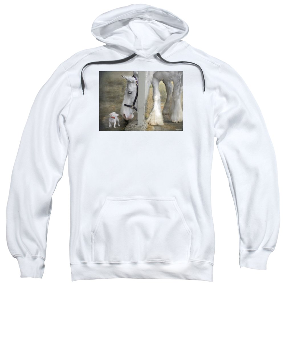 Horses Sweatshirt featuring the photograph Sparky And Sterling Silvia by Fran J Scott