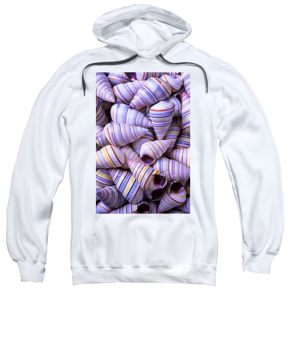Spiral Sweatshirt featuring the photograph Spiral Sea Shells by Garry Gay