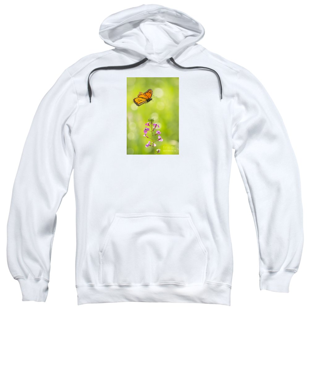 Animal Sweatshirt featuring the photograph Spring Delight by Alice Cahill