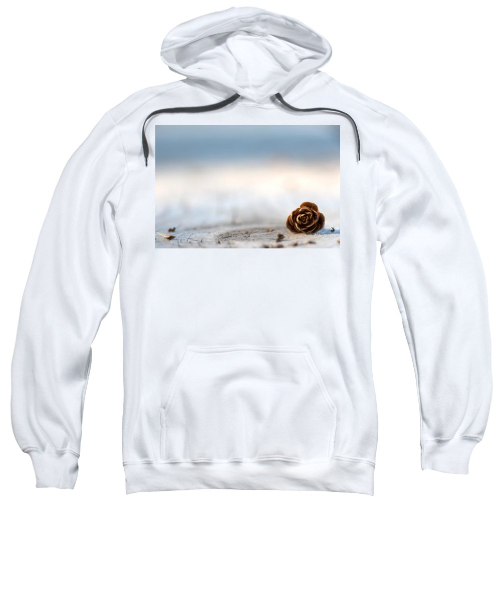 Pine Cone Sweatshirt featuring the photograph Squirrel Leftovers by Lisa Knechtel