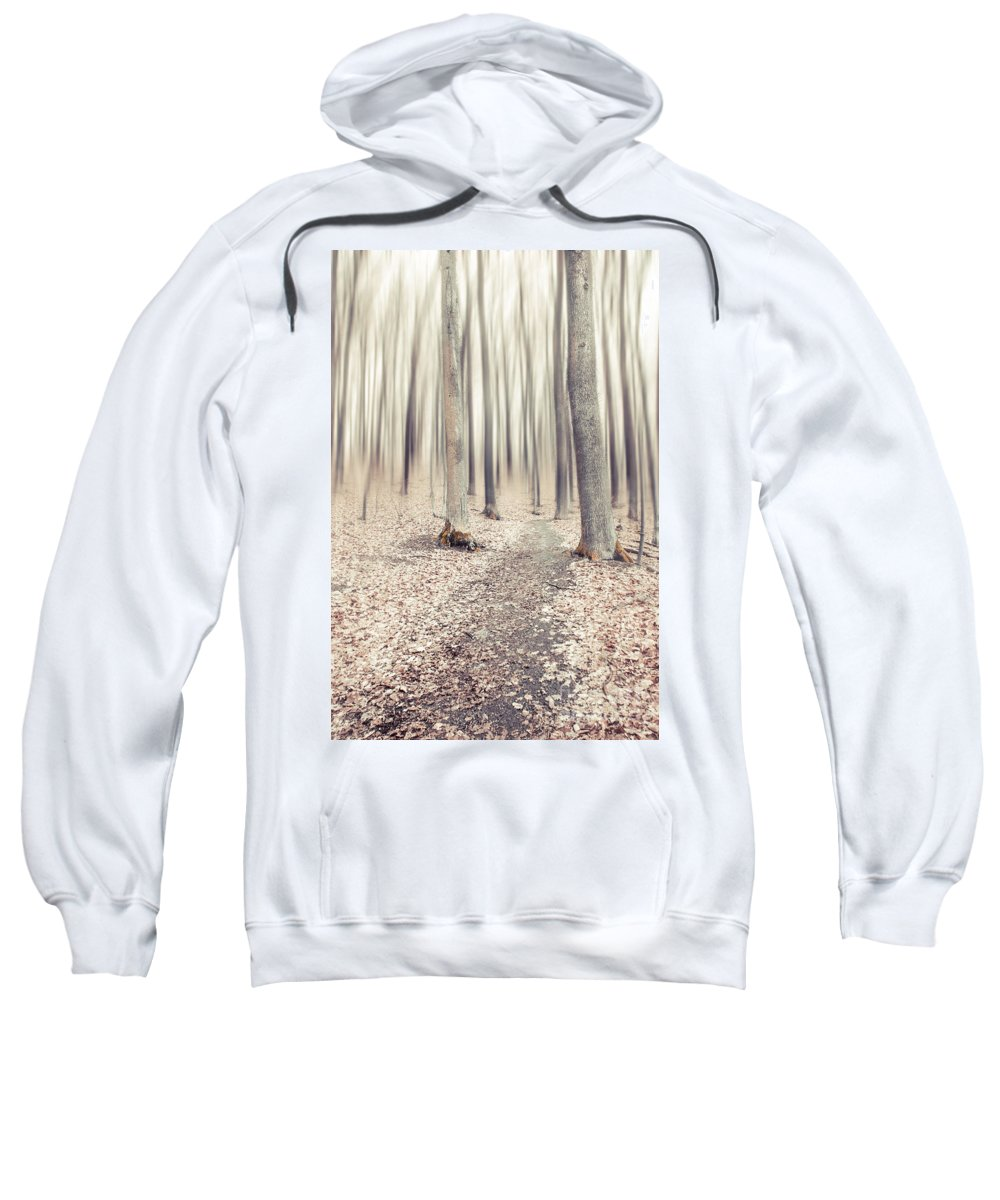Autumn Sweatshirt featuring the photograph Steppin' Through The Last Days Of Autumn by Hannes Cmarits
