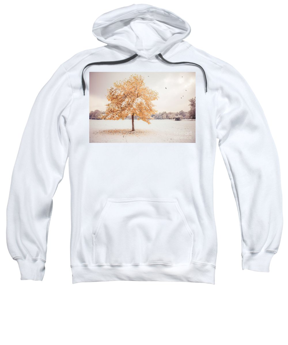 Autumn Sweatshirt featuring the photograph Still Dressed In Fall by Hannes Cmarits