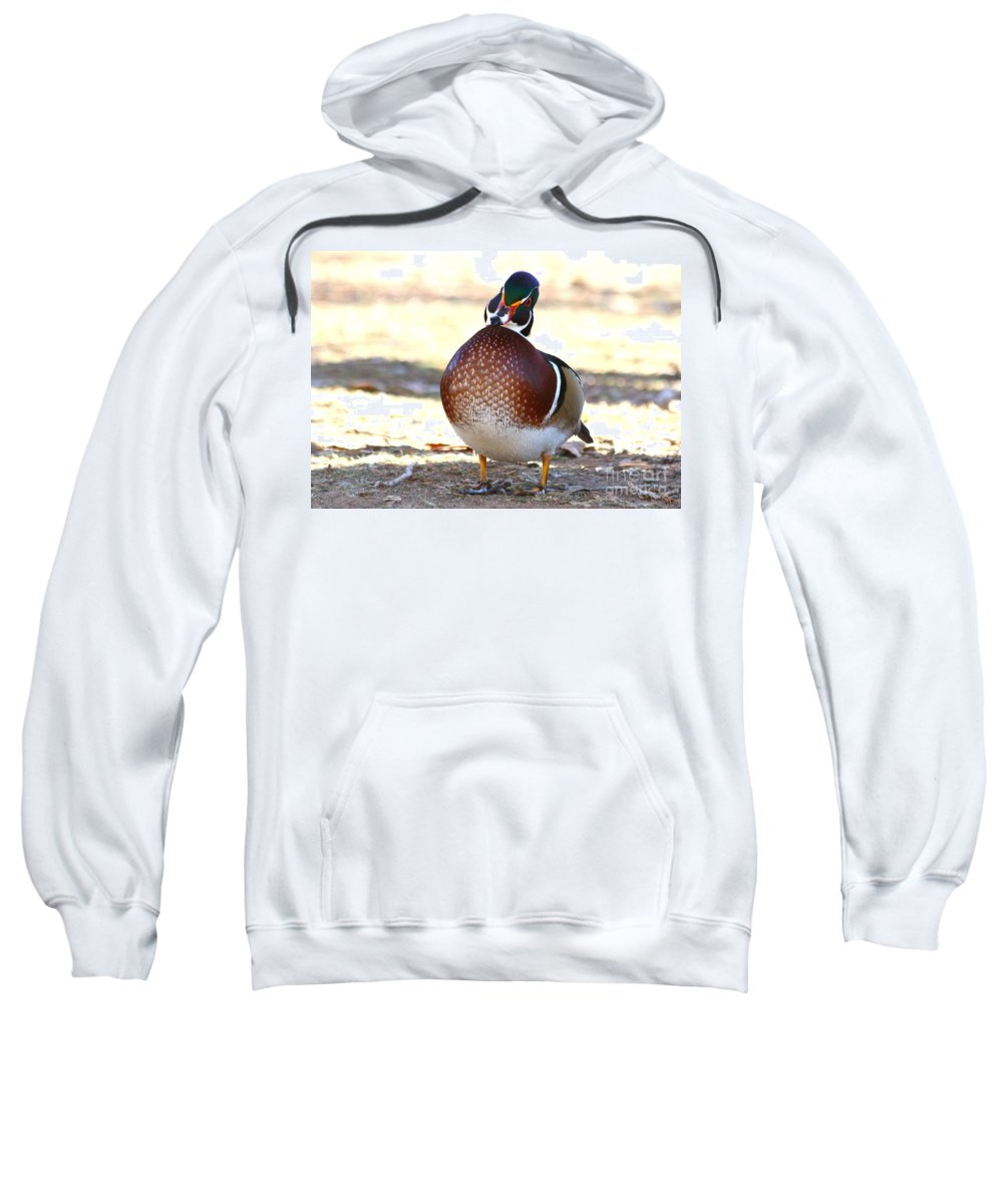 Wood Duck Sweatshirt featuring the photograph Like This Wood Duck by Angela Koehler