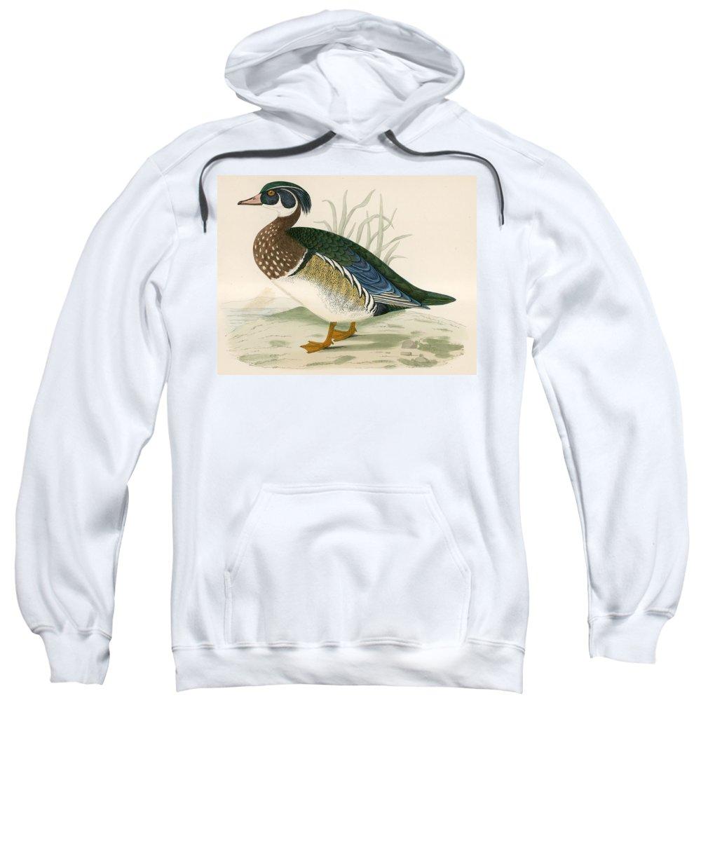 Birds Sweatshirt featuring the photograph Summer Duck by Beverley R. Morris