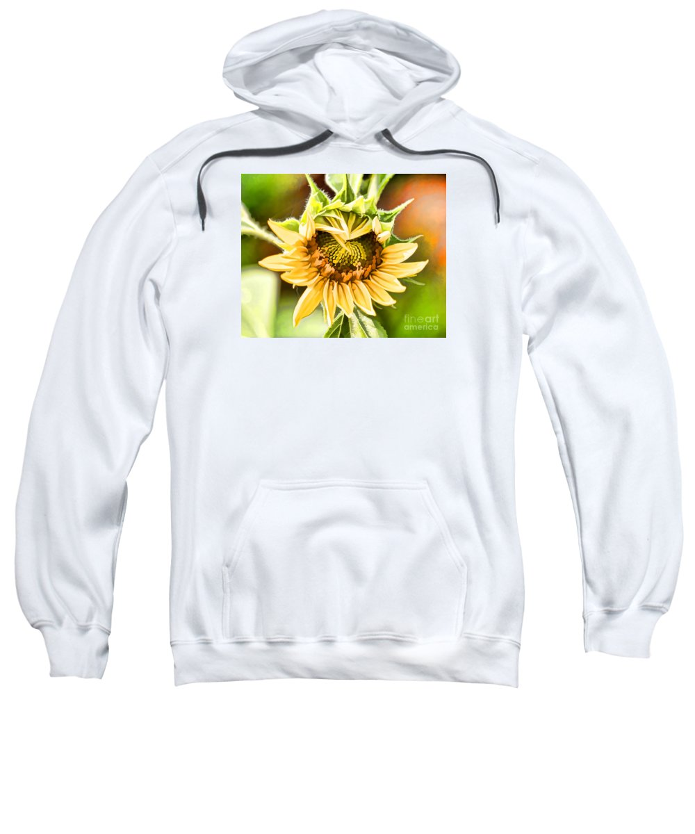 Flowers Sweatshirt featuring the photograph Sunflower Beauty - Painterly by TN Fairey