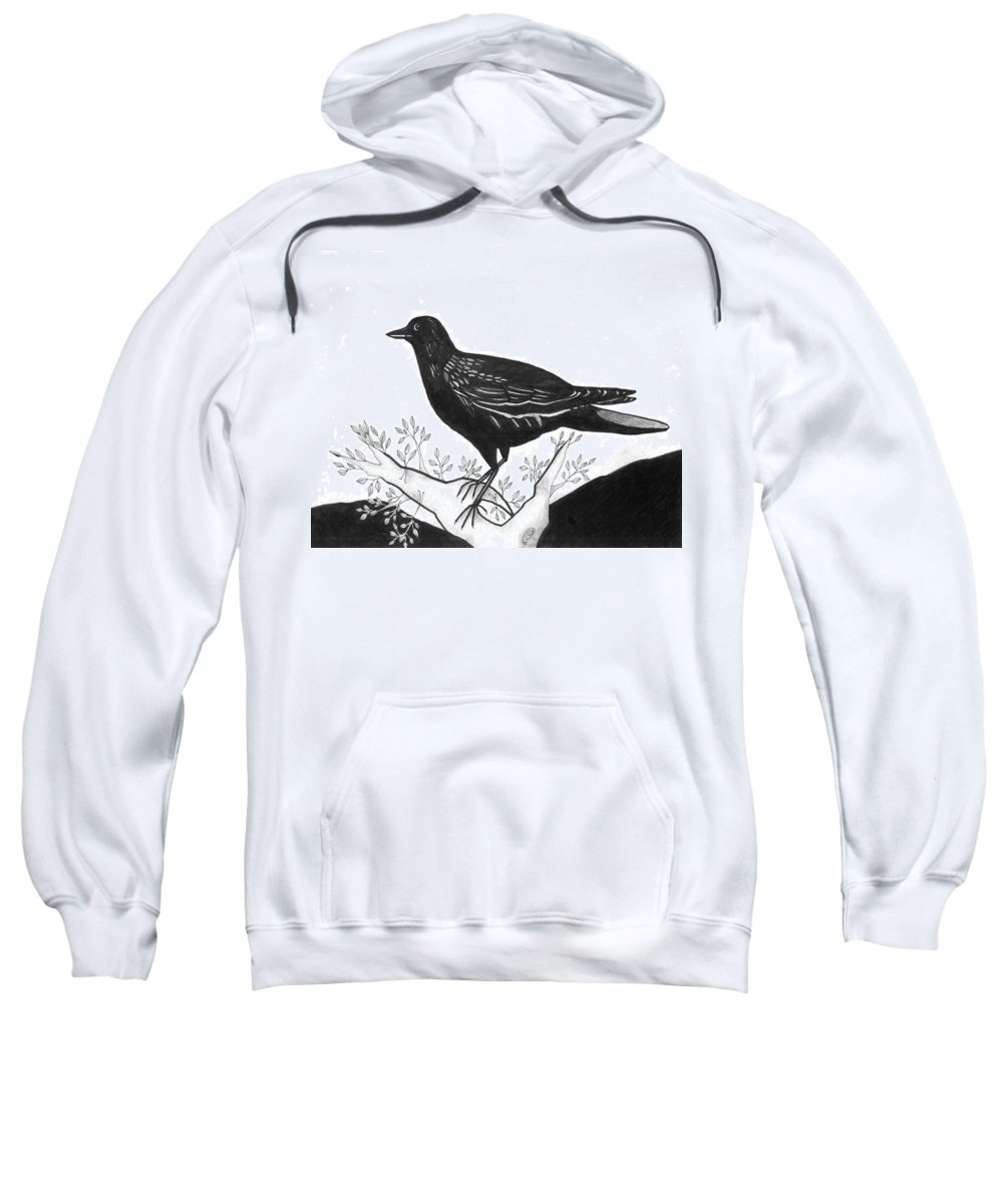 Bird Sweatshirt featuring the drawing The Witness by Helena Tiainen