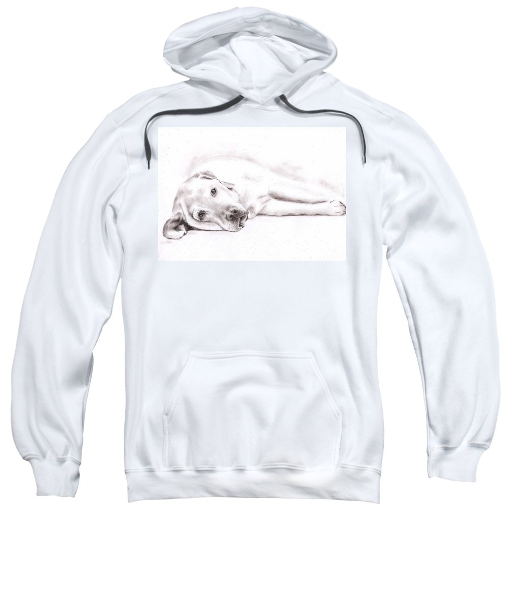 Dog Sweatshirt featuring the drawing Tired Labrador by Nicole Zeug