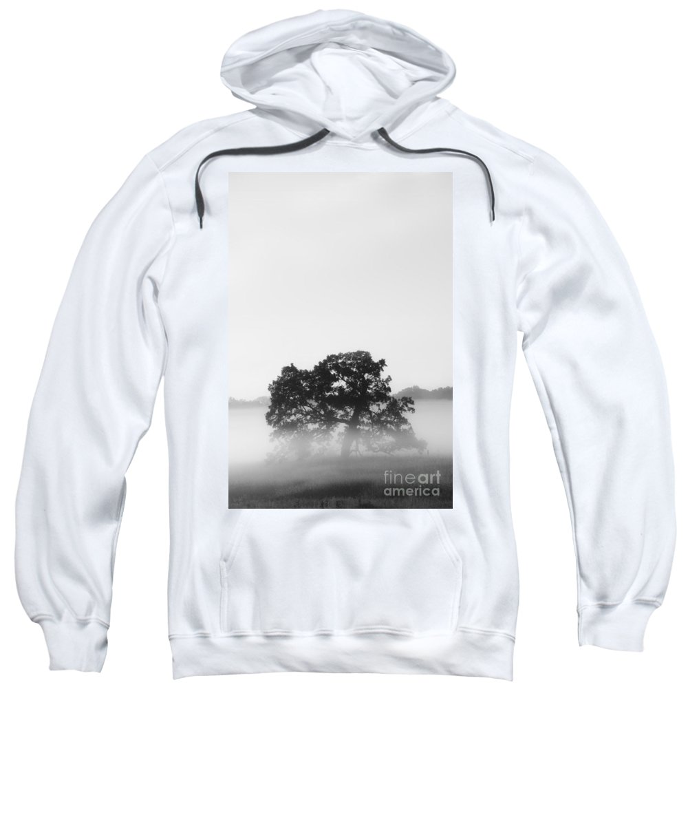 Tree Sweatshirt featuring the photograph Tree In Fog by Margie Hurwich
