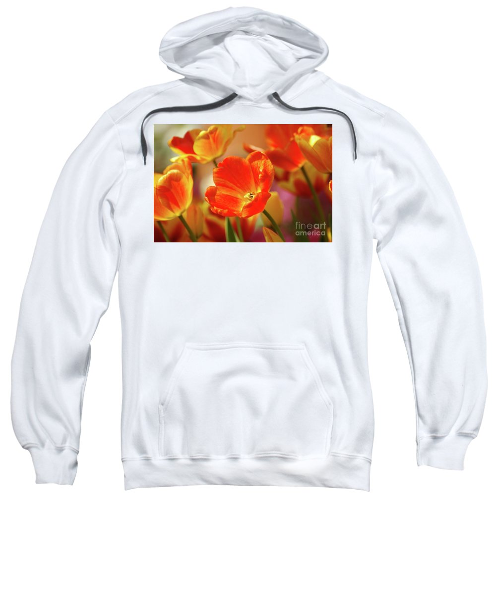 Tulips Sweatshirt featuring the photograph Tulips by Kathleen Struckle