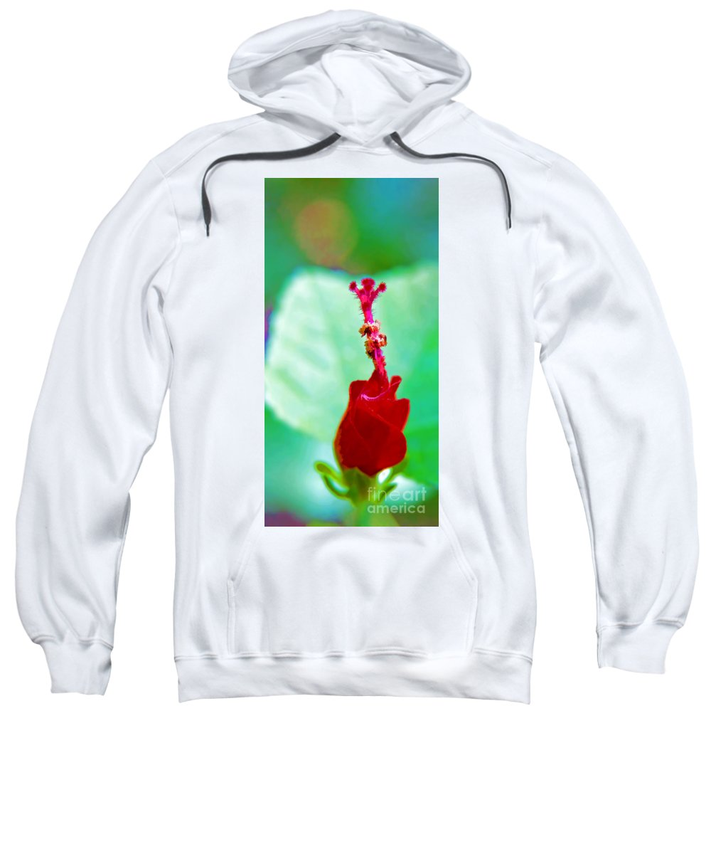 Turks Cap Sweatshirt featuring the photograph Turks Cap With Visitors by Gary Holmes